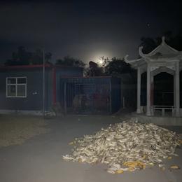 小蚊酱于2020-10-10 08:37发布的图片