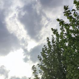 月色几分于2021-04-25 08:30发布的图片
