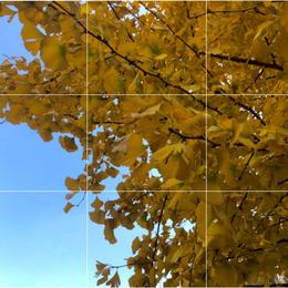 一起做个coders于2020-11-07 21:54发布的图片