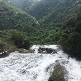 linshuai于2020-11-02 08:30发布的图片